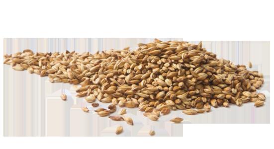 barley png - photo #22