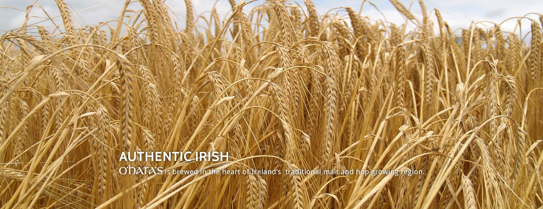 Home-Page-Authentic-Irish-1