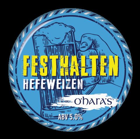 Festhalten Fisheye Domed 25082016 copy